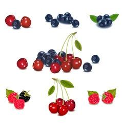 mega set of berries vector image
