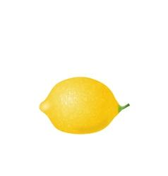 Photorealistic Lemon Isolated vector image vector image