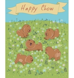 Happy chow-chow on the blossoming field vector