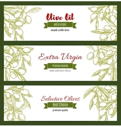 Branch with raw olive berry and leaf sketch vector