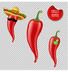 hot chilli pepper big set vector image vector image