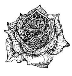Beautiful hand drawn ornate rose flower in doodle vector