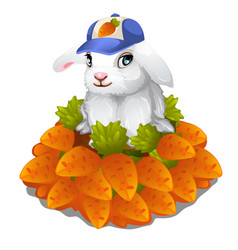 hare in cap sits in pile of carrots easter symbol vector image