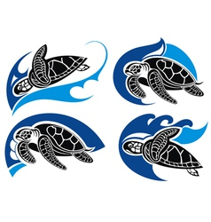 Sea turtles vector image