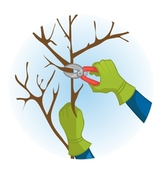 Hands trimming a tree with garden clippers vector