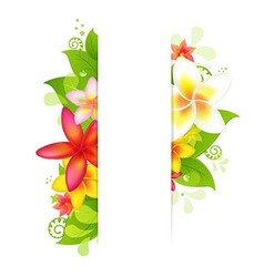 Natural background with flower vector