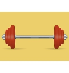 Realistic barbell for fitness classes vector image vector image