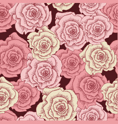 vintage pink roses seamless pattern template vector image