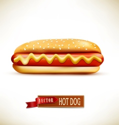 Bun with sausage hot dog isolated on a white backg vector