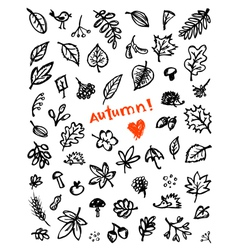 Autumn background sketch vector