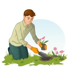 Young man planting flowers in garden vector