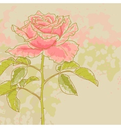 Pink rose on toned background vector
