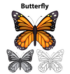 butterfly in three different drawing styles vector image