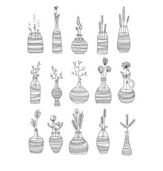 collection of glass bottles with flowers hand vector image vector image
