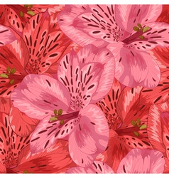 seamless background with pink and red alstroemeria vector image vector image
