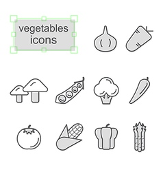 Thin line icons set Vegetables vector image vector image