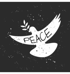 Grungy peace dove with olive branch vector
