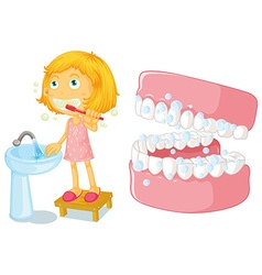 Little girl brushing teeth vector