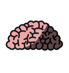 brain human organ memory shadow vector image