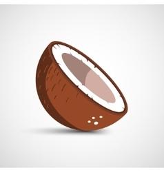 Half of coconut closeup vector