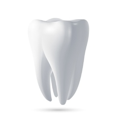 Tooth 3d render vector