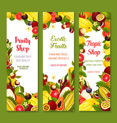 Banners with exotic fresh tropical fruits vector