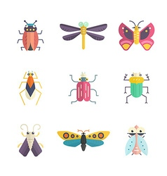 Colorful bugs vector