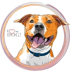sketch smiling dog American Staffordshire vector image