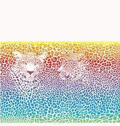 leopard rainbow pattern background vector image