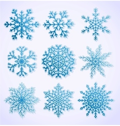 Set of paper snowflakes vector image