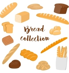 Different kinds of bread isolated on white vector image vector image