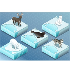 Isometric Arctic Animals on Ice vector image