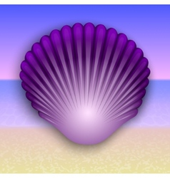 purple shell on the summer sea beach vector image