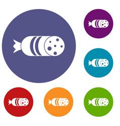 Salami sausage icons set vector