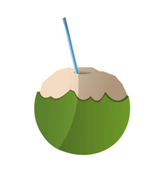 Coconut drink icon vector