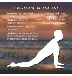 Yoga pose infographics benefits of practice vector