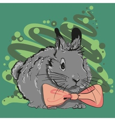 Bunny with a pink bow vector image