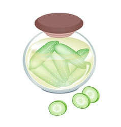 Pikled cucumber in a jar on white background vector