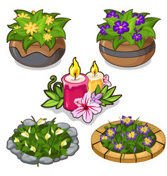 set of flowers in pots flower beds and candles vector image vector image