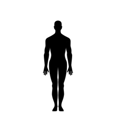 Man silhouette isolated vector