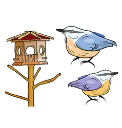 Cartoon birds with bird box vector