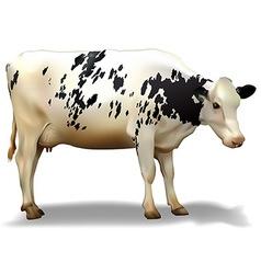 Milk cow vector