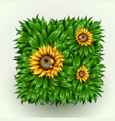 realistic beautiful grass frame with sunflowers vector image