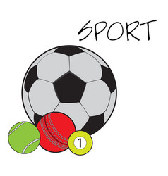 Set of sport balls vector