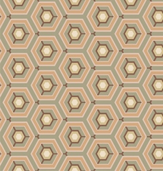 Vintage pattern hexagon vector