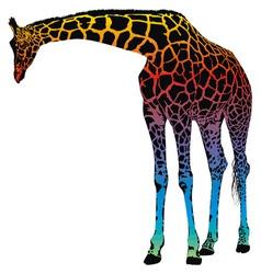 Giraffe rainbow vector