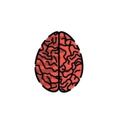 Human organ flat icon vector