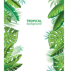 Tropical leaves and plants vector