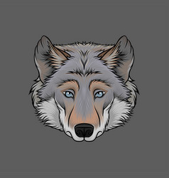 head of wolf portrait of wild animal hand drawn vector image
