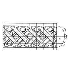 Antique enrichment torus moulding pilaster vector